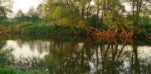 Место ловли плотвы