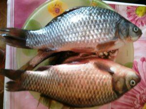 Как избавится от запаха тины в рыбе