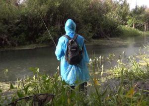 Ловля рыбы в дождь